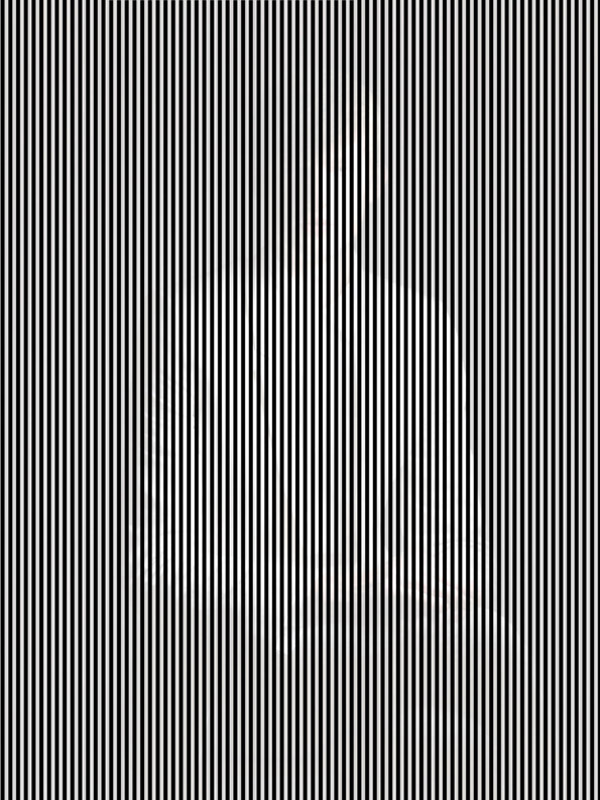 Hidden-Image-Optical-Illusion
