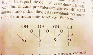 silice-rogasmica